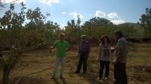 Megara, Attiki (Dr. Y. Trogianos, Dr. S. Theocharopoulos, Dr. M. Doula)